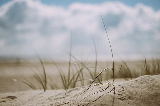 osetnik najlepsze plaże ranking miejscowości nadmorskich atrakcje